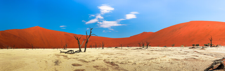 Panorama of red dunes and dead camel thorn trees in Deadvlei, Namibia