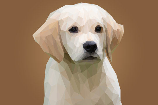 Adorable Gray Puppy Head in Lowpoly Illustration