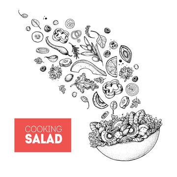 Salad sketch. Food illustration. Cooking salad design. Food menu elements. Hand drawn. Flying salad concept. Vector illustration on white background. Healthy and organic food. Vegan menu.