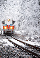 Winter forest scene with snow and old colorful train on the track in Budapest
