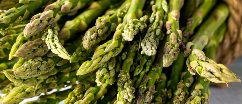 A macro close up view of a bundle of asparagus stalks.