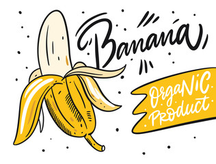 Banana poster. Organic product. Hand drawn vector illustration in cartoon style. Isolated on white background.