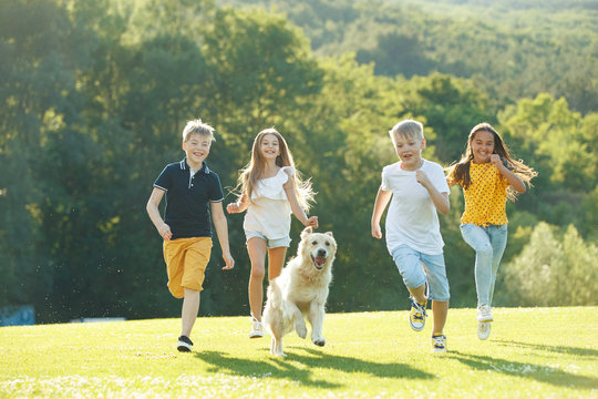 Children playing with a dog in nature.