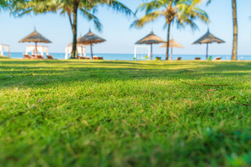 Grass ground by tropical beach with palm tree and leaf umbrellas on background