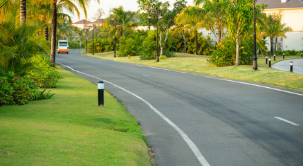 Road in vacation resort with green trees, grass and early sunlight