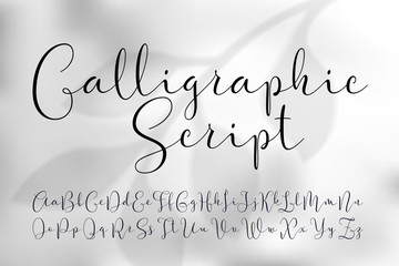 Vector calligraphic script font. Classic style handwritten typeface. On light grey foliage background