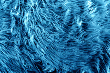 Blue fur for background or texture. 2020 Classic Blue pantone. Fuzzy blue fur plaid. Shaggy blanket background. Fluffy fake textile fur. Flat lay, top view, copy space