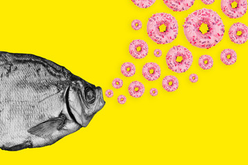 Concept fish and donuts on a colored background. Modern art collage.
