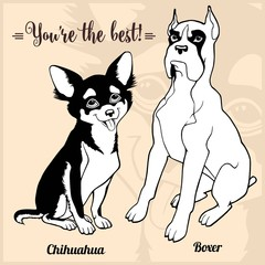 Chihuahua, Boxer - set with dog breeds, cartoon pictures