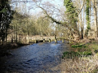 Wooden bridge over the River Chess, a chalk stream in the Chiltern Hills, Hertfordshire, UK