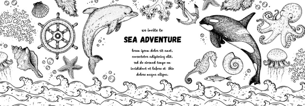 Underwater world hand drawn collection. Sketch illustration. Seaweed, coral, seashells, starfish, jellyfish, fish, octopus, dolphin, whale illustration. Undersea world collection. Nautical set.