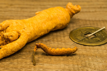 caterpillar fungus, and ginseng root, medicine of the traditional Chinese medicine