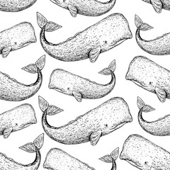Sperm whale seamless pattern. Hand drawn sketch style. Cachalot vector illustration.