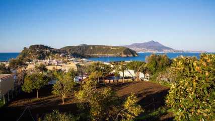 Procida (Napoli, Italy) - View of Ischia, Vivara and Chiaiolella bay