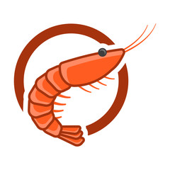 Cartoon shrimp logo in a circle. Isolated vector on a white background