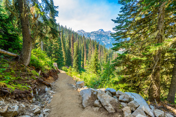 Beautiful Mountain Trail View at Joffre Lakes, British Columbia, Canada. Wall mural
