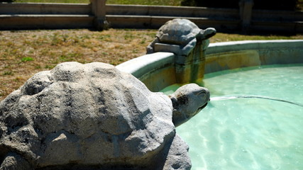 fountain with decorative marble turtles on a sunny summer day, in detail Wall mural
