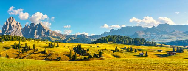 Fototapeten Honig Alpe di Siusi or Seiser Alm and Sassolungo mountain, Dolomites Alps, Italy.