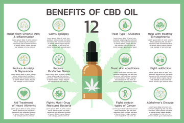 twelve benefits of CBD oil for health or Cannabidiol, Cannabis infographic information concept, hemp. flat vector symbol icon illustration design