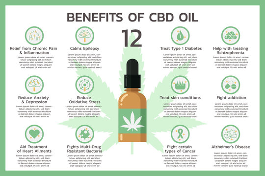 twelve benefits of CBD oil for health or Cannabidiol, Cannabis infographic information concept, hemp. flat vector symbol icon illustration design
