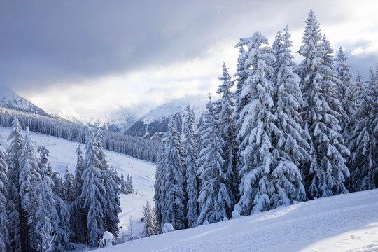 view of piste at ski resort in Austrian alps