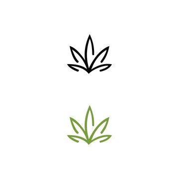 cannabis logo design for branding identity