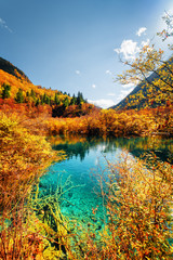 Photo sur Aluminium Bleu jean Autumn forest reflected in amazing pond with azure water