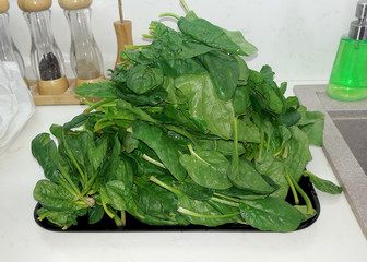 Fresh green spinach on white background. Healthy food concept.