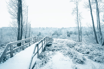 Beginning of a wooden bridge in the snow covered forest. Horizontal layout