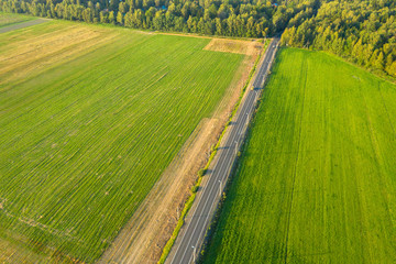 Aerial view of the road through the agricultural field