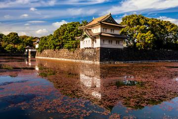 Japanese Imperial Palace at summer day in Tokyo, Japan Wall mural