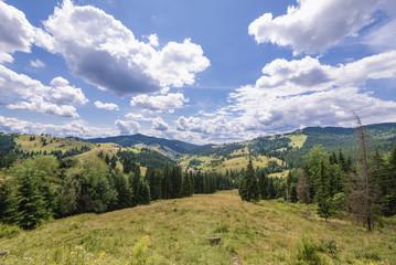 Ciumarna mountain pass in Obcina Mare ridge of Eastern Carpathian Mountains Romania