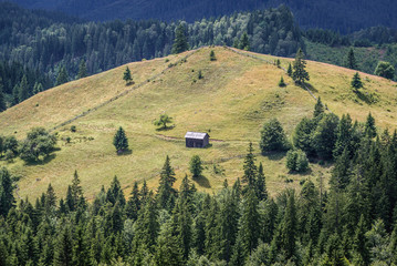 Wooden cottage seen from Ciumarna mountain pass in Obcina Mare ridge of Eastern Carpathian Mountains Romania