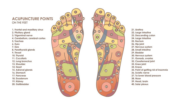 Acupuncture points on the feet. Reflex zones on the feet. Chinese medicine. Vector illustration