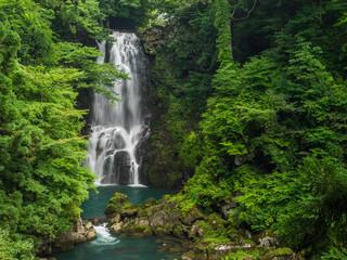 Tuinposter Bos rivier nasonoshirataki falls 奈曽の白滝