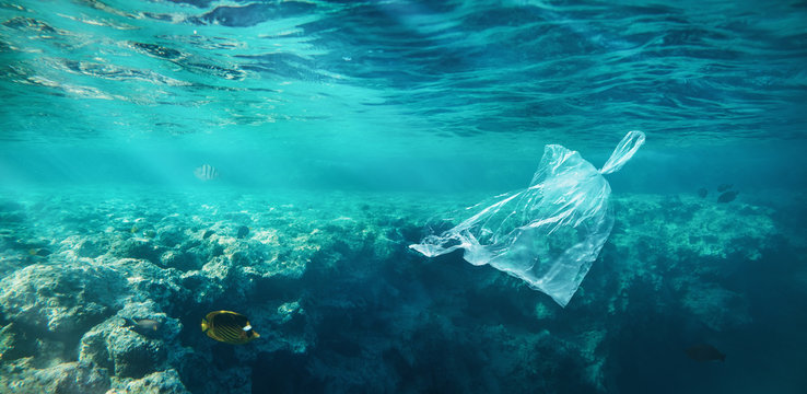 Ocean pollution concept, plastic bag floating in the water at the coral reef with copy space