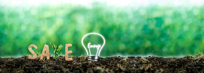 text Save with the light bulb with the energy illuminated on the ground completely. for renewable, sustainable development over blurred background. environment concept.Ecology .Energy saving concept