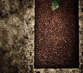 Wall Mural - Coffee background with small grains with free space for your decoration.