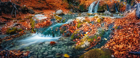 Türaufkleber Braun Waterfall cascade in the forest in autumn among the fallen colorful bright leaves.