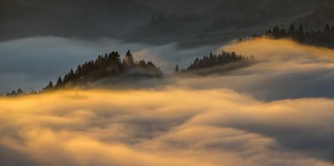 Pieniny morning foggy