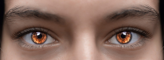 Beautiful brown glowing eyes of a girl. Photographed close-up.