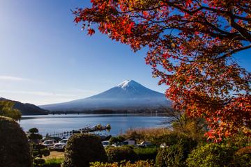 Garden Poster Brown Autumn at Mt.Fuji
