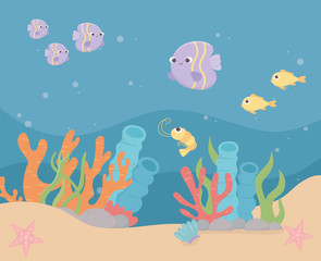 fishes shrimp starfishes life coral reef cartoon under the sea