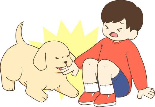 ゴールデンレトリバーの子犬(人間の子供が子犬に手を噛まれる)