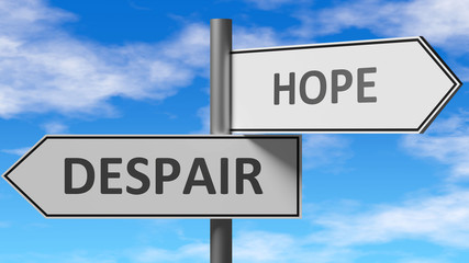 Despair and hope as a choice - pictured as words Despair, hope on road signs to show that when a person makes decision he can choose either Despair or hope as an option, 3d illustration Fotomurales