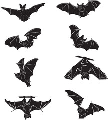 Bat, bat in flight, in motion, in different positions, illustration, black and white