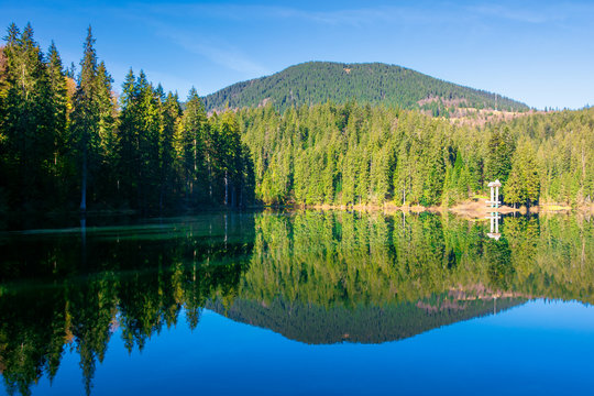 mountain lake among the coniferous forest. morning nature scenery with reflections in calm water. sunny weather with blue cloudless sky in springtime. location Synevyr national park, ukraine