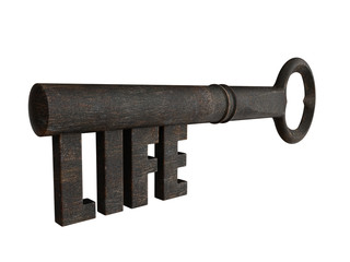 Key of life - Old iron key with the secret formed by the word life. 3D illustration