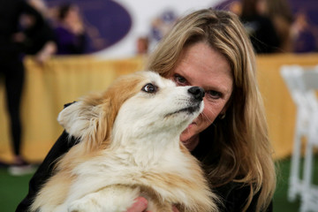 Jenny, a corgi dog, looks on while its owner, Diane Polito of New Jersey, poses for a picture ahead of the Masters Agility Championship during the Westminster Kennel Club Dog Show in New York