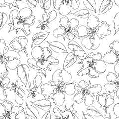 Poster Artificiel Vector seamless pattern contour flowers of an apple tree and leaves, hand-drawn, spring theme. Doodle style, outline. Monochrome black and white pattern, for wallpaper,Textile, wedding greeting card